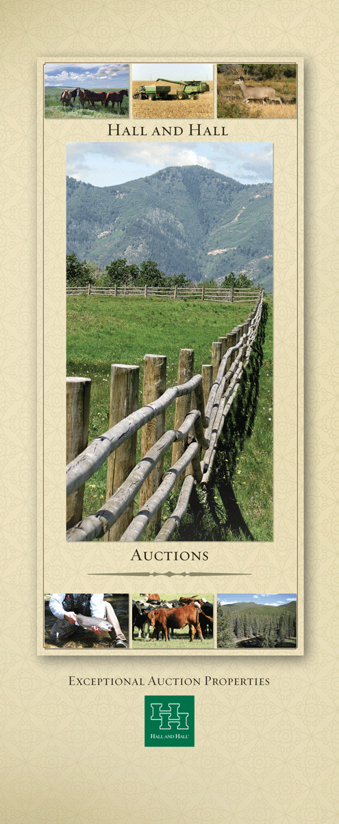 Auction banner 33 x 80