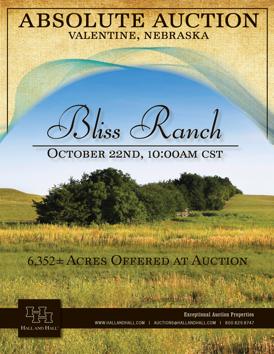 Bliss Ranch Auction brochure cover