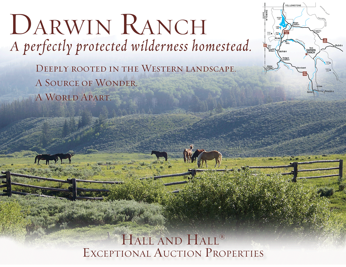 Darwin Ranch Auction brochure cover