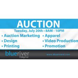 Auction 2 x 4 banner